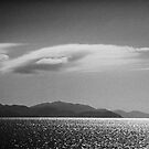 Trinity Inlet 4 in B&W by Chris Cohen