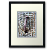 YOU NAILED IT! Framed Print