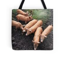 Seven little pigs Tote Bag