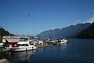 Horseshoe Bay British Columbia by Allen Lucas