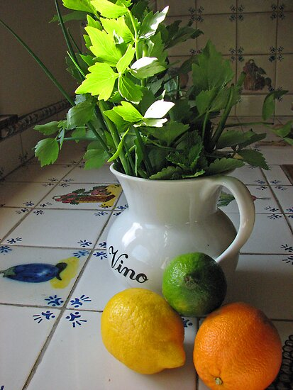 Herbs and Citrus by Josette21