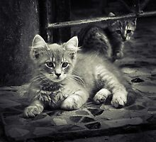 Little Me by Vladimir Konovalov