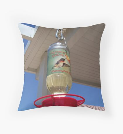 Kodak Humming Bird Feeder Throw Pillow