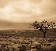 Evening over Malhamdale by Weirdfish695