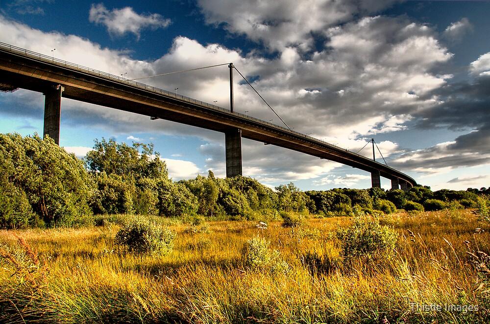 Erskine Bridge by Linda  Morrison
