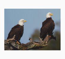 A Bald Eagle Couple! T-Shirt