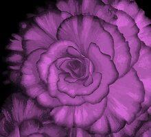 Purple Pleasure by Dmarie Frankulin