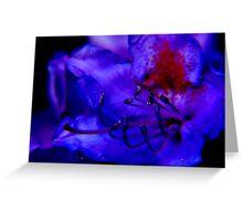 midnight blue ... Greeting Card