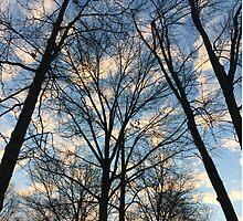 First day of Winter  by DerFuhrer