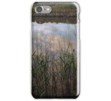 Tidal Summer  iPhone Case/Skin