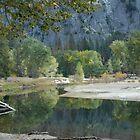 Yosemite Reflections by JamesTH