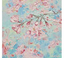 Yoshino Cherry Blossoms No. 2 Photographic Print