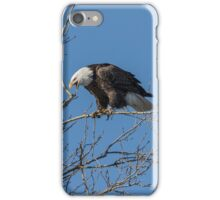 The Call Of The Wild And Free iPhone Case/Skin