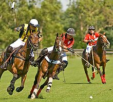 Polo in Kentucky by Chuck St. John