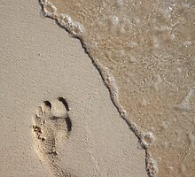 Footprint on the Beach by Alex  Bramwell