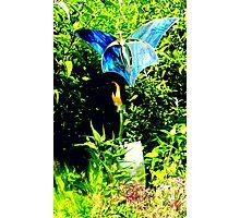 Uncommon Blue Photographic Print