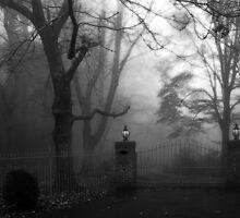 The Gateway by Sue Wickham
