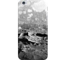 Boiler Rust iPhone Case/Skin