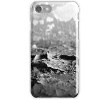 Boiler Rust iPhone Case/Skin