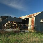 Tired shed and yards by ndarby1