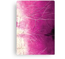 Psychmaster Magenta Brush Canvas Print