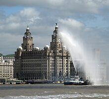 Liver Building Liverpool by Mike Paget