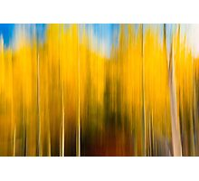 Autumn's Blurred Lines Photographic Print