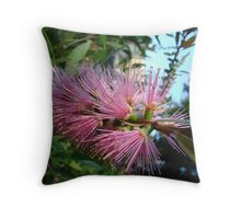 Pretty Pink Bottlebrush Throw Pillow