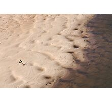 Bank of the Murchison River Photographic Print