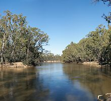 The Mighty Murray by Blue Gum Pictures