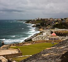 Puerto Rico Coastline 2 by David Chappell