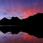 Tasmanian Scenery by Tim Wootton