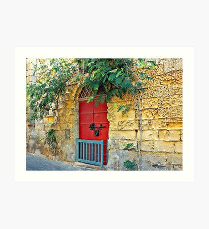 Red Door Blue Gate Art Print