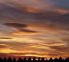 Sunset 1 21-07-08 by Sharon Perrett