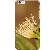 Kenyan Wild Flower iPhone Case/Skin