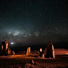 Milky Way Above the Pinnacles by Sandra Chung