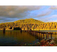 Golden hills Photographic Print