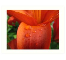 Droplets of Varying Sizes Art Print