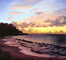 Beautiful Sunset by Suzanne Glenning