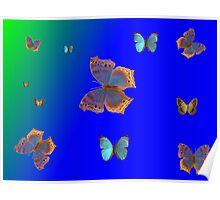 Butterflies Butterflies! Poster