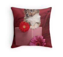 Zac-(the runt) Throw Pillow