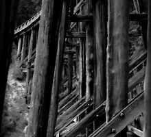 noogee trestle bridge by jfpictures