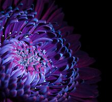 UV Induced Bio-luminescence 11 by AKunde