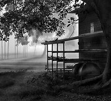 Foggy Dawn by David Creed