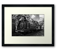 Palmerston takes a drink  Framed Print