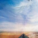 Kite by Aimee Stewart