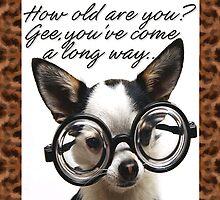 Funny Dog Birthday Card by Patricia Johnson