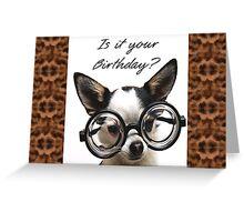 Funny Dog Birthday card Greeting Card