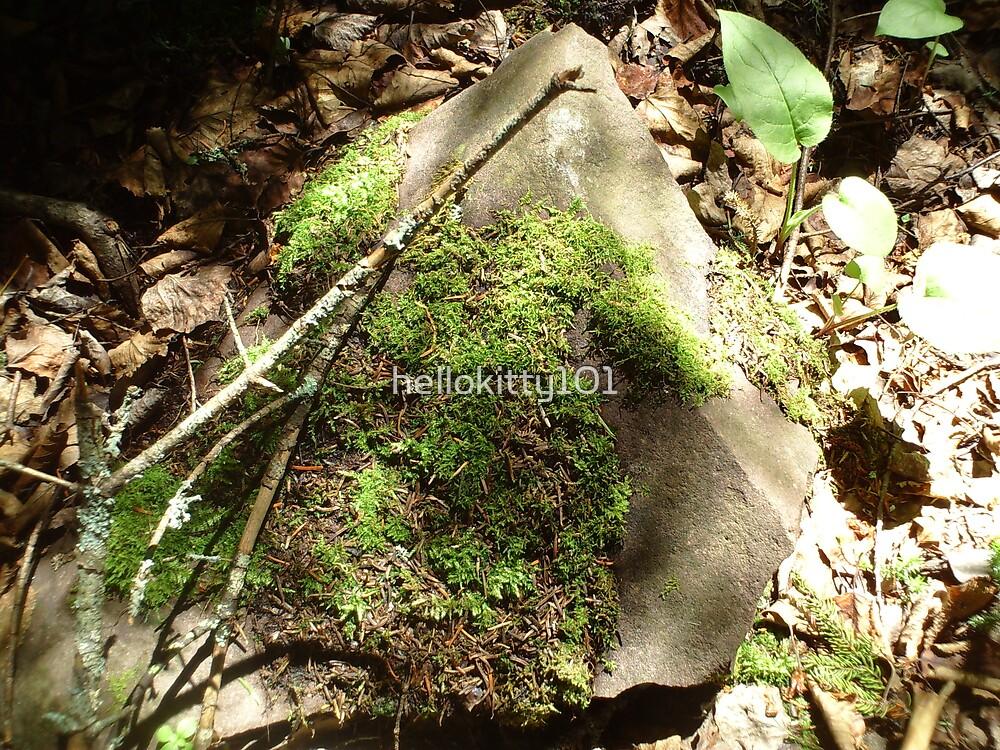 a little moss by hellokitty101
