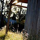 wood shed sun by Brodyn  Beveridge